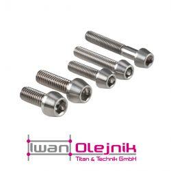 Ti-DIN 912 Schraube mit konischen Kopf 3.7165, Grade 5 M6x20